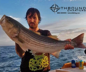 Southbound Charters is hitting the Striped Bass hard out of Waterford, CT